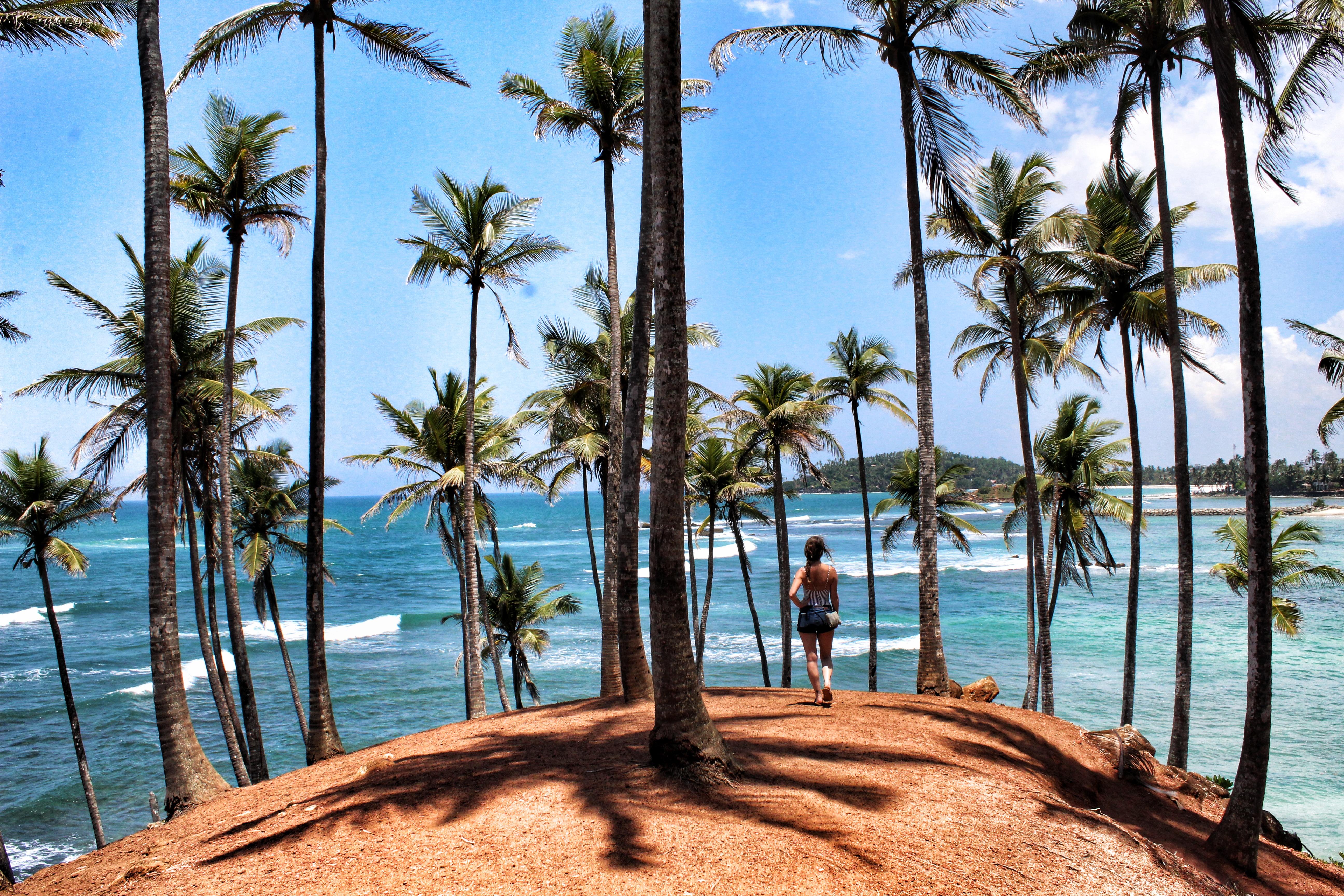 Sri Lanka – 3 Wochen-Route